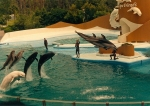 1987_sea_world_and_more_scannen0002