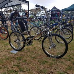 10. more bmx show and shine stuff 589677