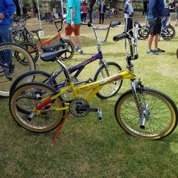 12. some haro bikes at radelaide 86244515 n
